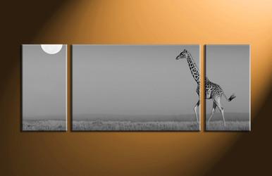 home decor,3 piece canvas art prints, black and white canvas print, wild canvas print,  animal canvas art prints