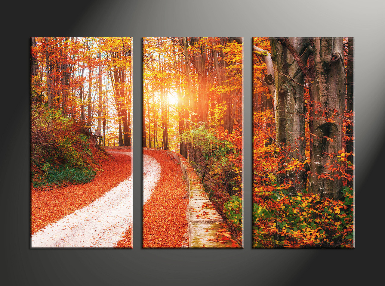 3 piece colorful autumn scenery photo canvas for 3 piece paintings