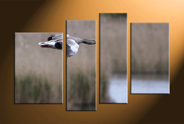 home decor, 4 piece canvas art prints, wildlife canvas print, bird large pictures, wildlife canvas art prints