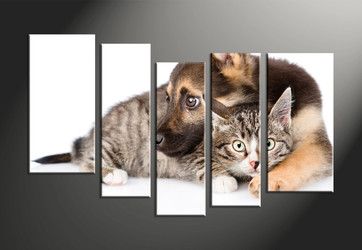 home decor, 5 piece canvas art prints, wildlife canvas art prints, dog huge canvas art, cat artwork