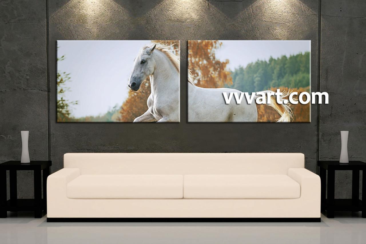 2 Piece Canvas Wall Art 2 piece white horse wildlife canvas wall art