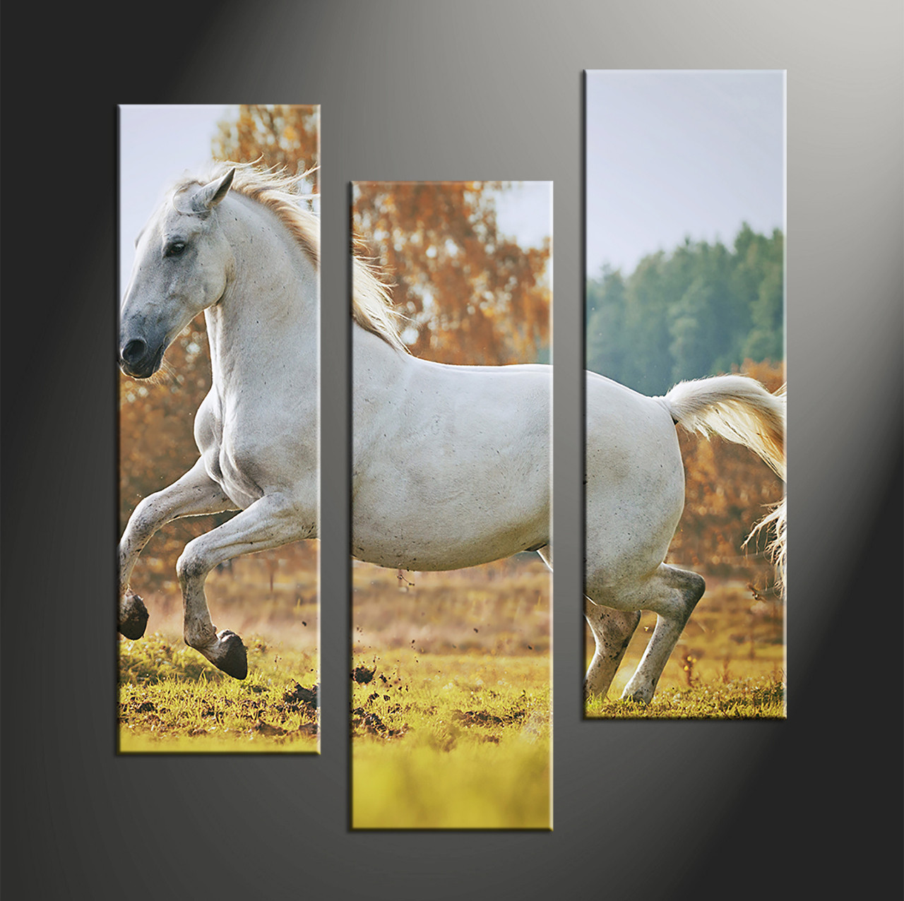 3 Piece Wildlife White Horse Huge Canvas Art