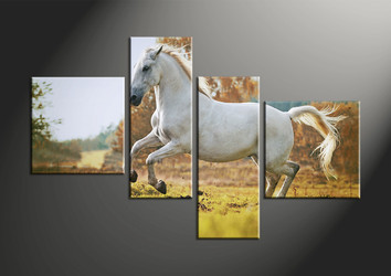 home decor, 4 piece canvas art prints, animal artwork, horse canvas photography, wildlife art