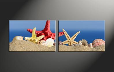 home decor, 2 piece canvas art prints, ocean canvas art prints, shell huge canvas art, starfish canvas wall art