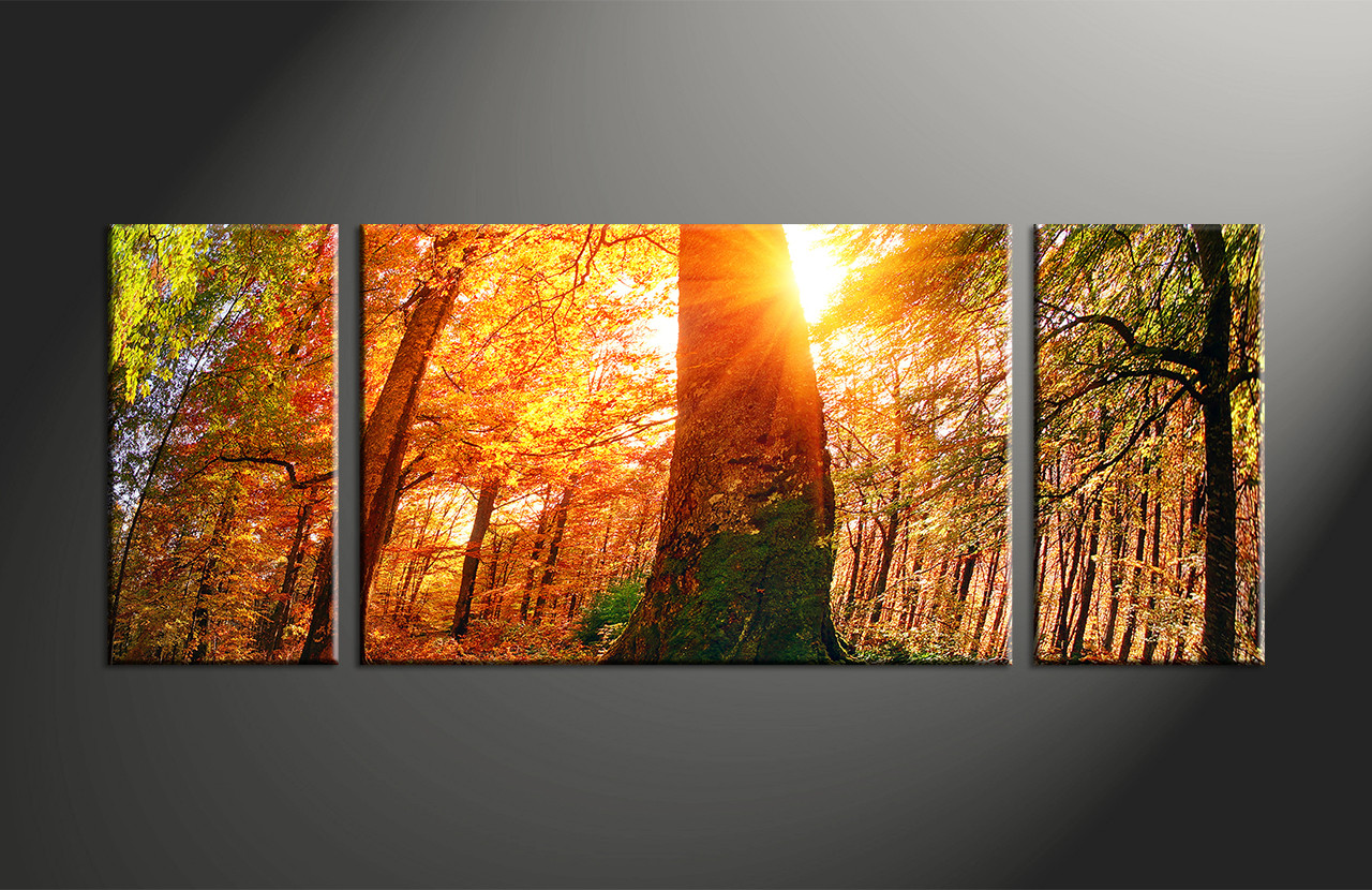 3 Piece Red Scenery Nature Trees Canvas Art Prints