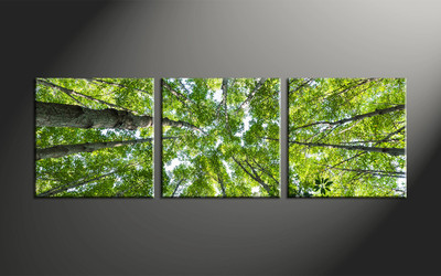 home decor, 3 piece canvas wall art, forest pictures, scenery canvas art, leafy tree group canvas