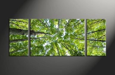 home decor, 3 piece multi panel art, forest pictures, scenery canvas art, leafy tree group canvas
