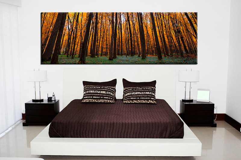1 Piece Pictures, Bedroom Canvas Print, Scenery Photo Canvas, Sunrise Wall  Art,