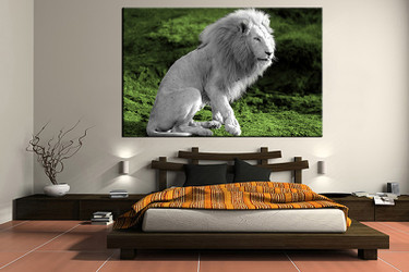 1 piece canvas wall art, bedroom art print, lion wildlife large canvas, wildlife multi panel canvas
