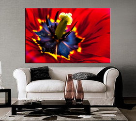 1 piece canvas wall art, living room huge canvas print, red floral photo canvas, floral large pictures