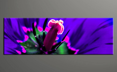 1 piece canvas print, home decor artwork, floral photo canvas, floral canvas photography