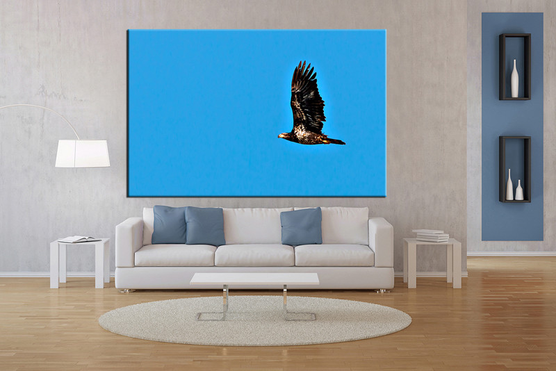 1 piece bird blue large canvas art for Buy large canvas prints