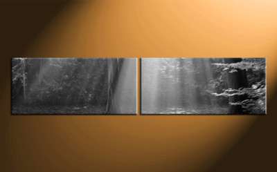 2 piece canvas photography, home decor art, black and white canvas wall art, oil paintings black and white huge pictures