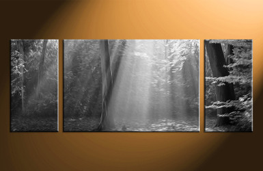3 piece photo canvas, home decor artwork, oil paintings multi panel canvas, black and white canvas photography