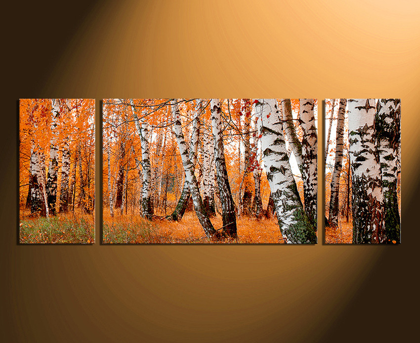3 Piece Canvas Wall Art Panoramic Print Scenery Large Pictures Home Decor