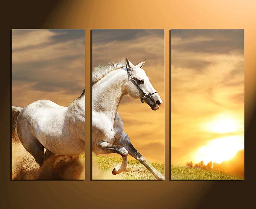 3 Piece Canvas Print, White Canvas Photography, Horse Gallop Canvas ...