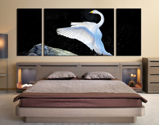 3 piece photo canvas, bedroom wall decor, swan multi panel art, wildlife canvas photography, swan huge pictures