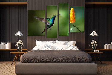 4 piece large canvas, bedroom group canvas, bird multi panel art, nectar canvas wall art, bird canvas photography