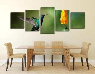 5 piece canvas wall art, dining room large pictures, nectar canvas photography, bird huge canvas art, bird artwork