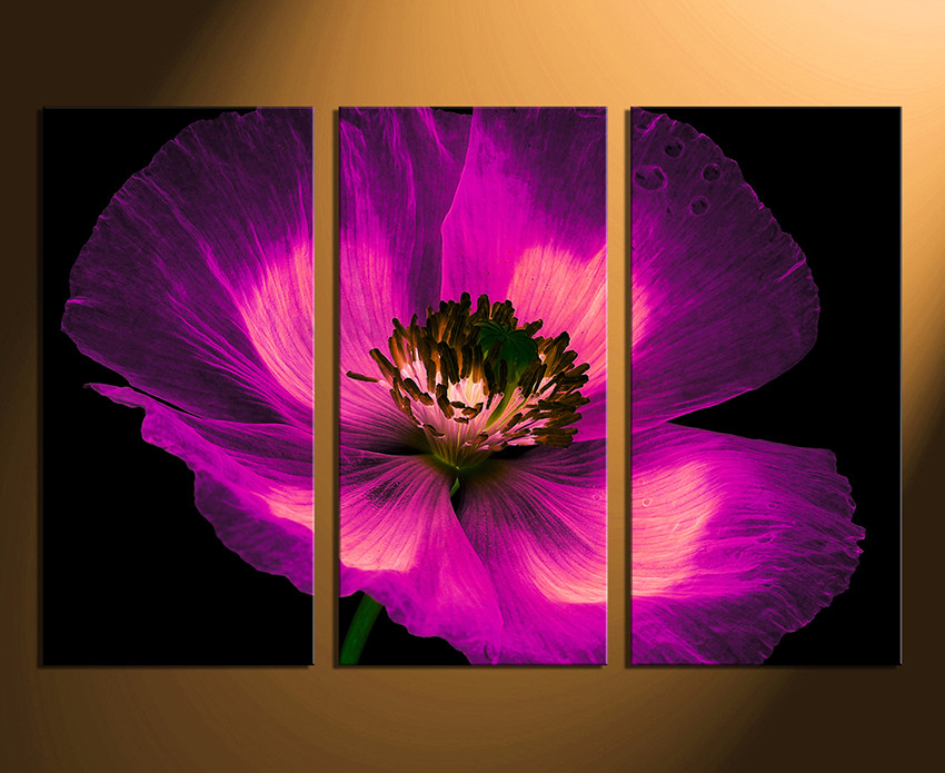 3 piece canvas photography purple flower canvas wall art floral 3 piece canvas wall art floral wall art purple wall decor purple floral mightylinksfo