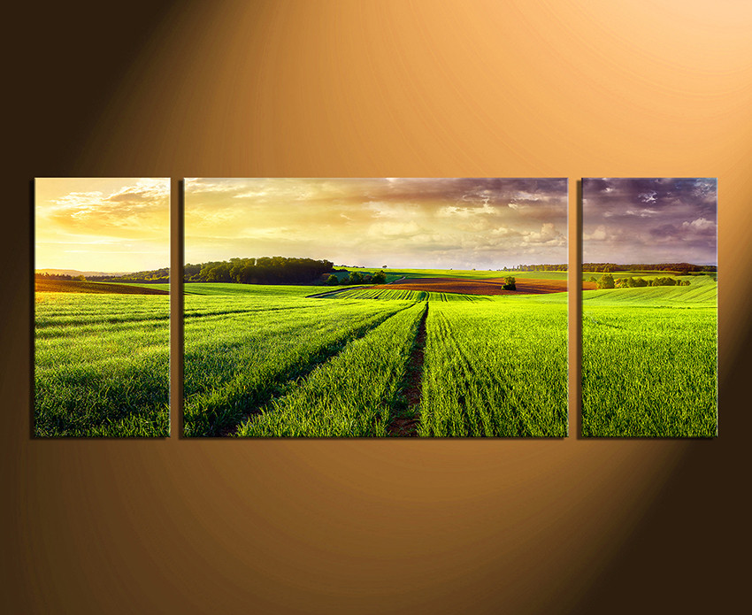 3 Piece Large Pictures Green Canvas Art Prints Panoramic