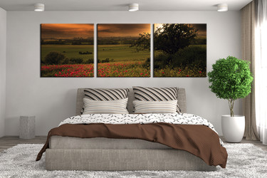 3 piece canvas photography, bedroom canvas wall art, scenery pictures, green  scenery canvas photography, panoramic scenery art