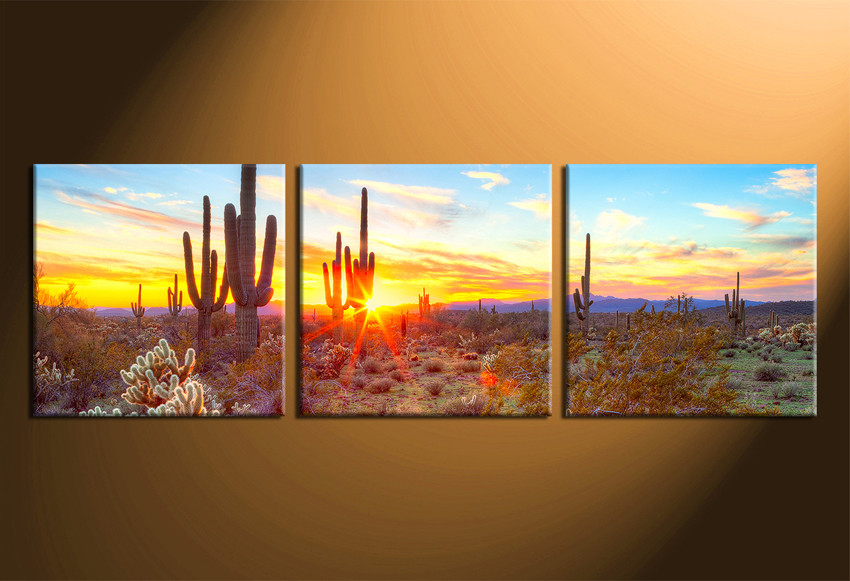 3 Piece Huge Pictures, Saguaro Cactus Canvas Art Print, Scenery ...