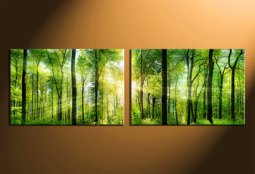 2 Piece Canvas Photography, Forest Wall Art, Nature Large Pictures ...