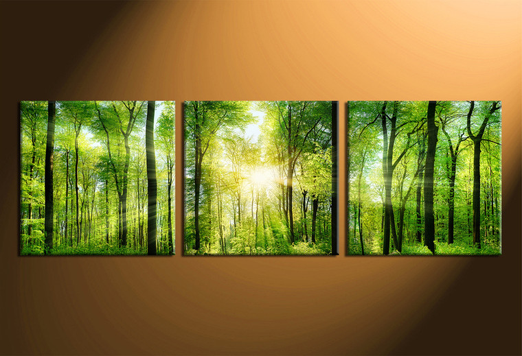 3 Piece Multi Panel Canvas Green Scenery Artwork Forest