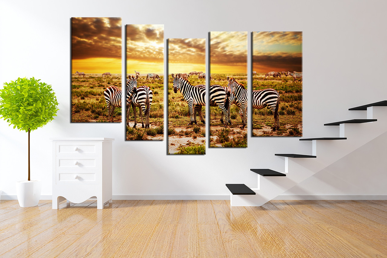 5 Piece Canvas Wall Art, Colorful Group Canvas, Zebra Wall Decor ...