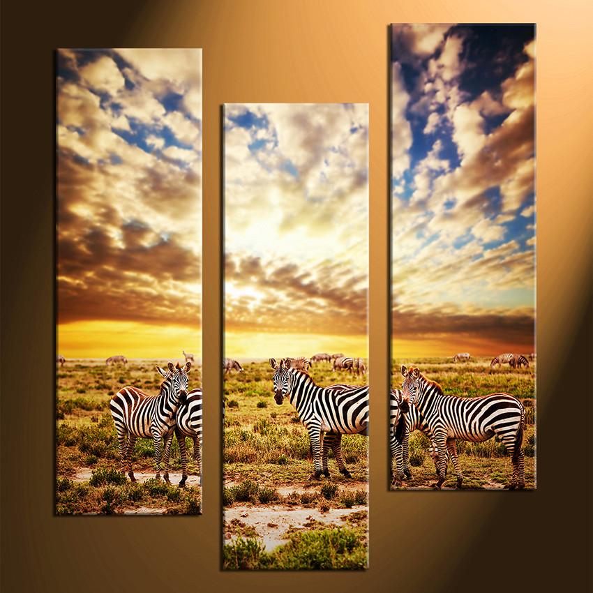 3 Piece Photo Canvas, Zebra Wall Decor, Grassland Large Pictures ...