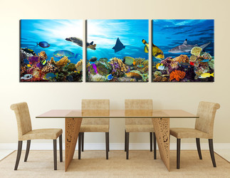 3 piece photo canvas, dining room canvas wall art, fish canvas photography, turtle group canvas, panoramic art