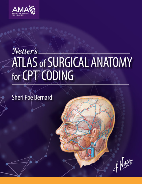 Netters Atlas Of Surgical Anatomy For Cpt Coding Op495015