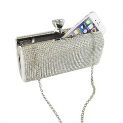 Crystals Minaudiere Clutch Silver
