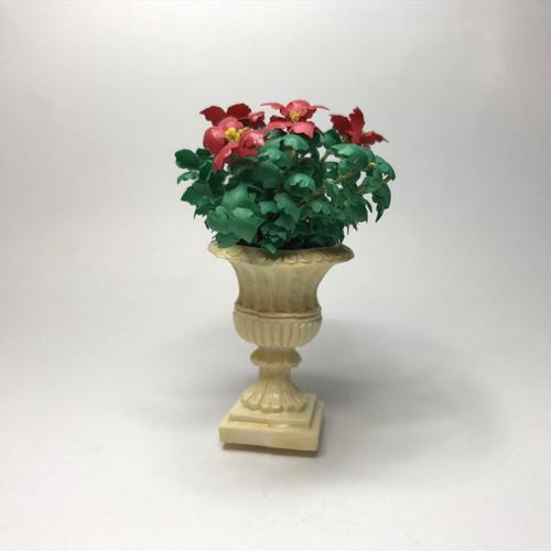 Poinsettia plant in cream color urn