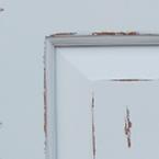 Architectural White Premium Paint Finish