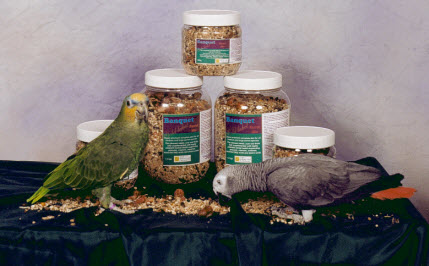 healthy-pet-birds.jpg