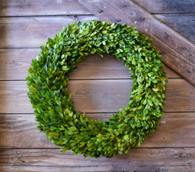 BOXWOOD COUNTRY MANOR WREATH - ROUND - 20""