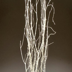 BIRCH BRANCHES - WHITE - (3-4')