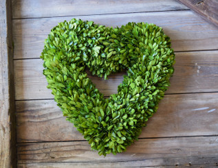 PRESERVED BOXWOOD WREATH - HEART - 16""