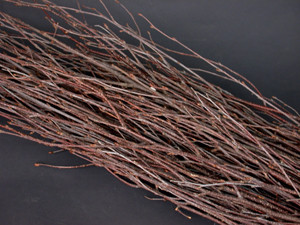 BIRCH BRANCHES - NATURAL - (3-4') - 25 PCS/BUNCH