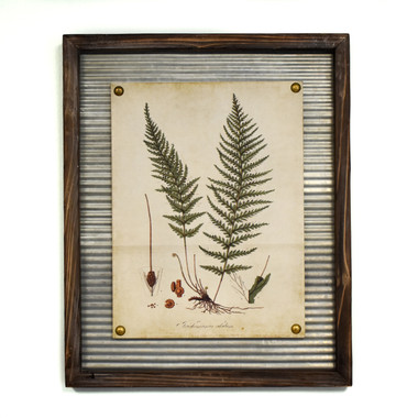 Wall Art - Feather Fern | Mills Floral