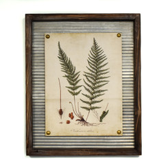 WALL ART - FEATHER FERN - 17.5 x 21.5""