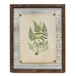 WALL ART - FOREST FERN - 17.5 X 21.5""