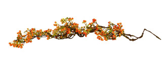 TWIG BERRY VINE ORANGE 48""