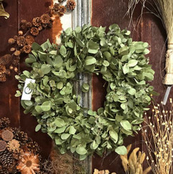EUCALYPTUS WREATH 22 INCH DRIED PACKED 1