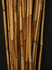 RIVER CANE - NATURAL - 3.5' - 12 BUNCHES