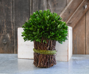 PRESERVED BOXWOOD BOUQUET - GARDEN STYLE - 10.25""