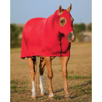 Full Body Horse Slinky Futurity Collection