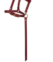 """Weaver Leather 5/8"""" Sucking with Catch Strap Riveted Halter"""